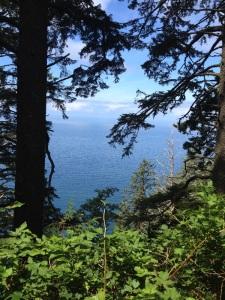 View from Tillamook Trailhead Hike
